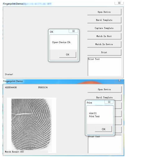 Fingerprint windows demo test