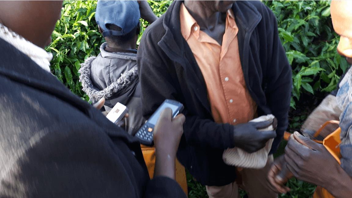 farming, microfinance, e-training