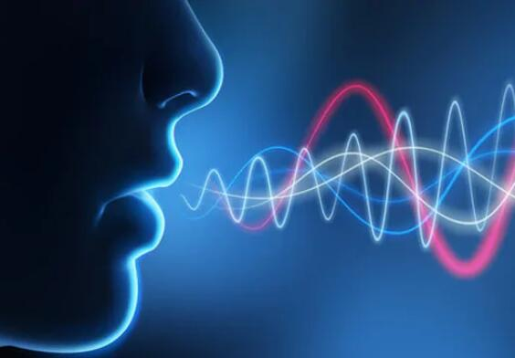 voiceprint recognition