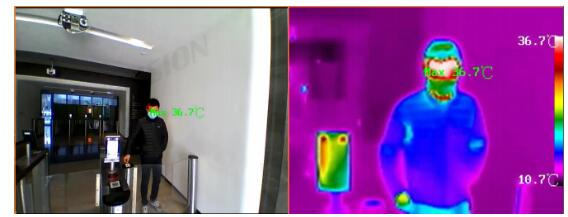 thermal imaging temperature measurement technology