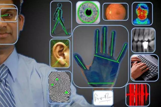 HFSecurity Plam Vein Biometric Supplier