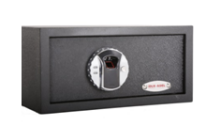 US100 Fingerprint Safety Box
